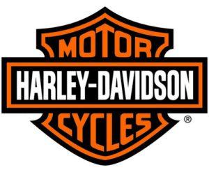 <strong>Création de Noms de marques d' entreprises & de sociétés .Timbuktoo-naming.Logo Harley-Davidson</strong>