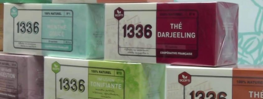 Thé 1336