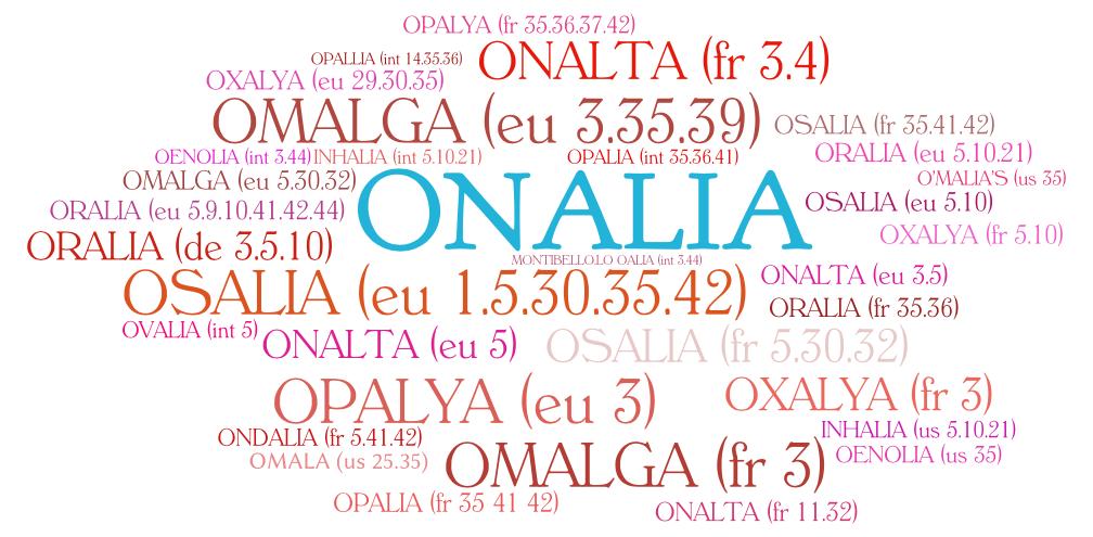Un exemple d'encombrement juridique, sur le nom ONALIA, en France, sur les classes 3, 5, 29, 30, 32 et 35.