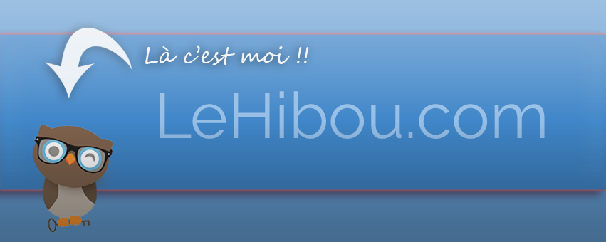 Le Hibou, plateforme informatique
